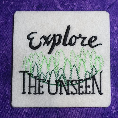 Explore the Unseen Coaster